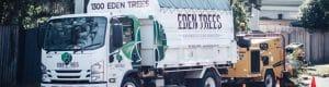 Tree waste tipper truck